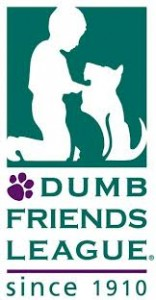 DDFL logo