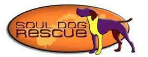 Soul-Dog rescue