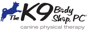 k9bodyshop-logo